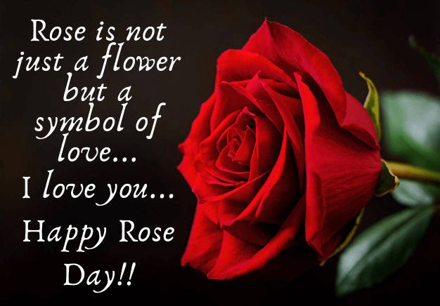 happy rose day wishes 2021